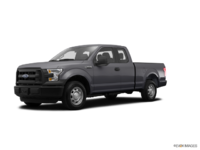 2016 Ford F-150 XL | Photo 3 | Magnetic