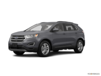 2017 Ford Edge SEL | Photo 3 | Magnetic Metallic
