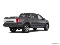 2017 Ford F-150 PLATINUM | Photo 2 | Magnetic