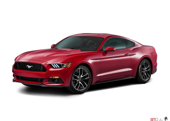 ford mustang gt 2015 montr al pr s de brossard et ch teauguay lasalle ford. Black Bedroom Furniture Sets. Home Design Ideas
