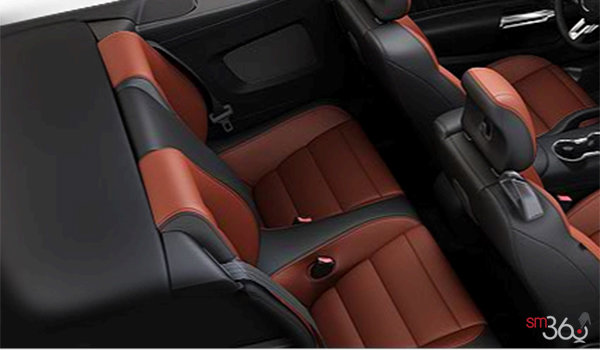 2016 Ford Mustang Convertible EcoBoost Premium | Photo 2 | Dark Saddle Leather