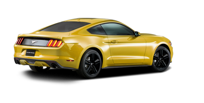 2016 Ford Mustang EcoBoost Premium | Photo 5 | Triple Yellow