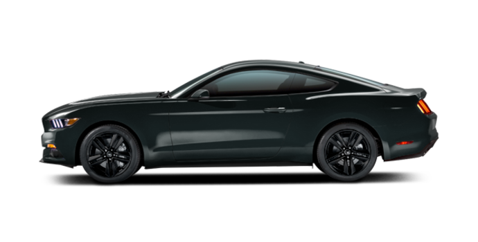 2016 Ford Mustang EcoBoost Premium | Photo 4 | Guard