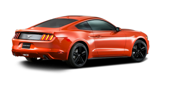 2016 Ford Mustang EcoBoost | Photo 5 | Competition Orange