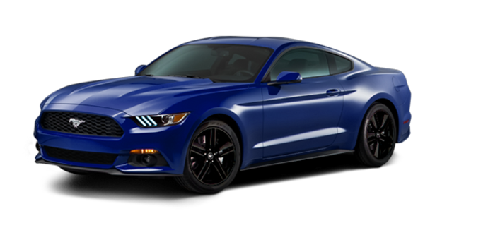 2016 Ford Mustang EcoBoost | Photo 6 | Deep Impact Blue