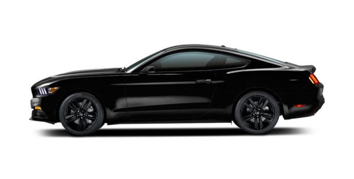 2016 Ford Mustang EcoBoost | Photo 4 | Shadow Black