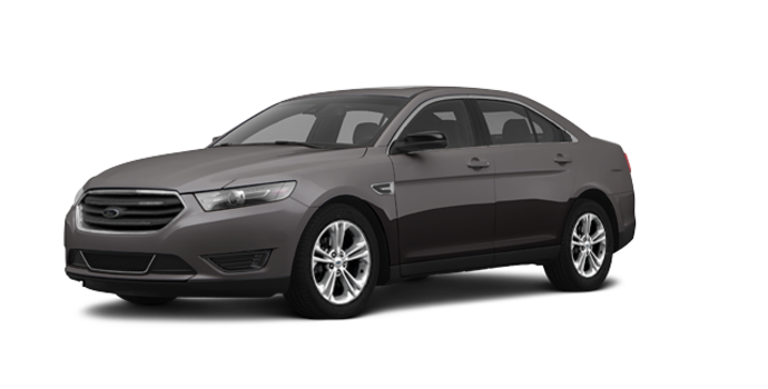 2016 Ford Taurus SE | Photo 6 | Magnetic