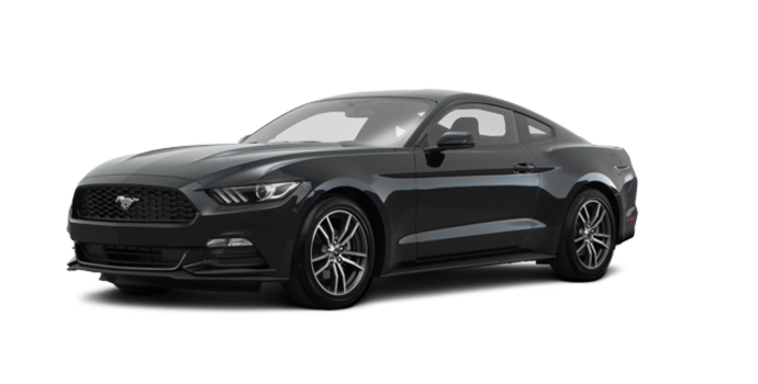 2017 Ford Mustang EcoBoost | Photo 6 | Shadow Black