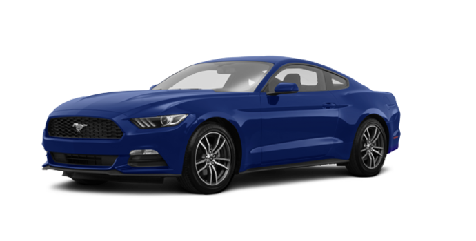 2017 Ford Mustang EcoBoost | Photo 6 | Lightning Blue