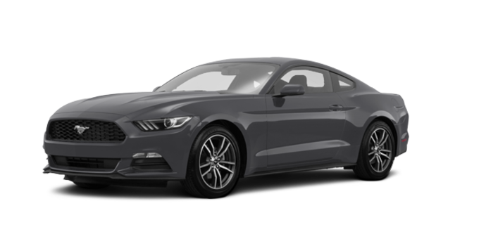 2017 Ford Mustang EcoBoost | Photo 6 | Magnetic