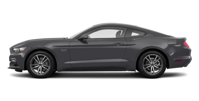 2017 Ford Mustang GT | Photo 4 | Magnetic