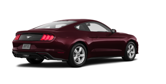 2018 Ford Mustang EcoBoost Fastback | Photo 5 | Royal Crimson Metallic Tinted Clearcoat