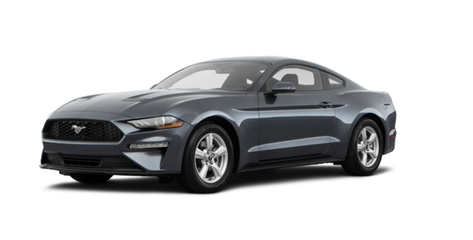 2018 Ford Mustang EcoBoost Fastback | Photo 6 | Magnetic Metallic