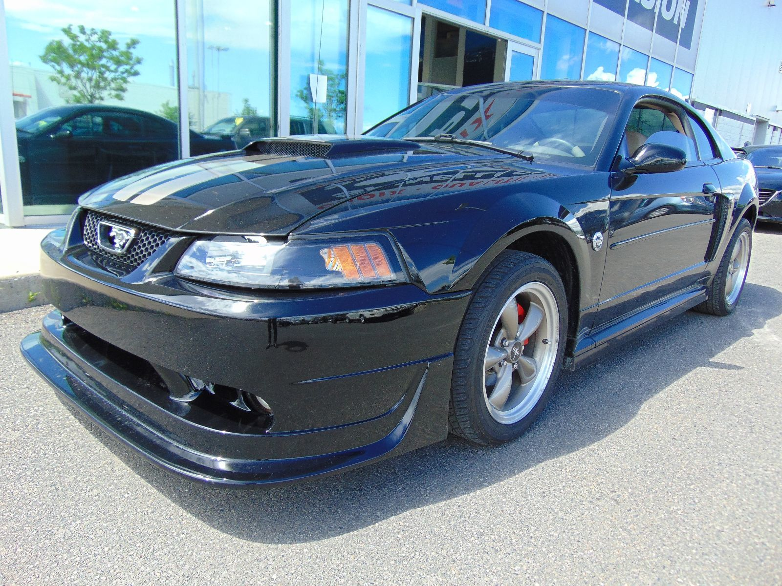 2004 ford mustang gt deal pending manual d 39 occasion vendre spinelli honda lachine p6796b. Black Bedroom Furniture Sets. Home Design Ideas