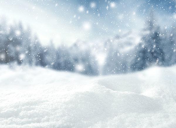 BG-LEFT-winter
