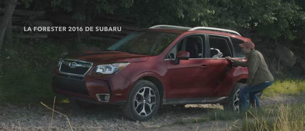 Forester 2016 de Subaru