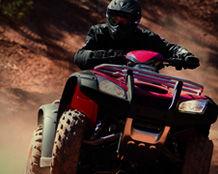 New Honda ATV's