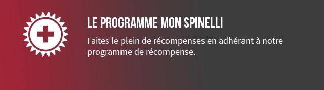 The my spinelli program