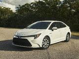 La Toyota Corolla 2020 offrira un modèle hybride