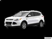 2016 Ford Escape TITANIUM | Photo 3 | White Platinum
