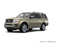 2017 Ford Expedition PLATINUM | Photo 3 | White Gold Metallic