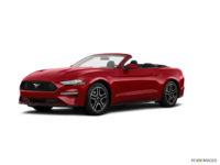 2018 Ford Mustang Convertible EcoBoost | Photo 3 | Ruby Red Metallic Tinted Clearcoat