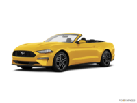 2018 Ford Mustang Convertible EcoBoost | Photo 3 | Triple Yellow Tri-Coat