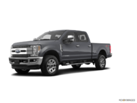 2018 Ford Super Duty F-250 LARIAT | Photo 3 | Magnetic