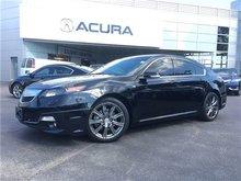 2014 Acura TL ASPEC   19RIM   NAV   TINT   LEATHER   NEWBRAKES