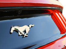 2016 Ford Mustang EcoBoost   Photo 10