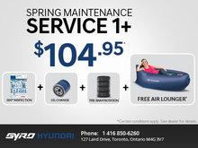Spring Maintenance Service1