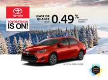 Toyotathon is on at Spinelli Toyota