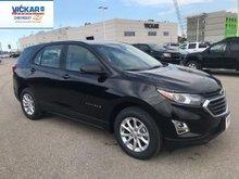 2019 Chevrolet Equinox LS  - $196.93 B/W