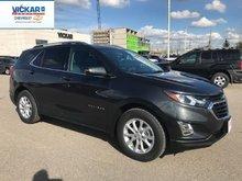 2019 Chevrolet Equinox LT  - $204.37 B/W