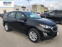 2019 Chevrolet Equinox LS  - $178.45 B/W