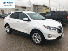 2019 Chevrolet Equinox Premier 1LZ  - $230.58 B/W