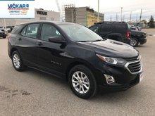 2019 Chevrolet Equinox LS  - $175.15 B/W