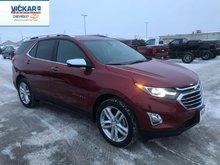 2019 Chevrolet Equinox Premier  - $244.03 B/W