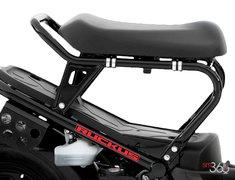 Honda RUCKUS BASE 2015