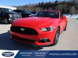 2017 Ford Mustang GT Premium  CONVERTIBLE! SPRING READY!