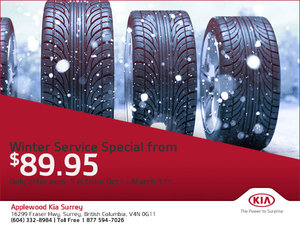 Winter Service Special from $89.95