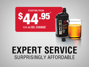 Expert Service - Surprisingly Affordable