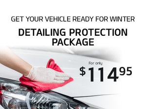 Winter Aesthetic Protection Package