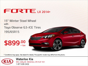 Get Winter Steel Wheel Tires for Your Forte LX!