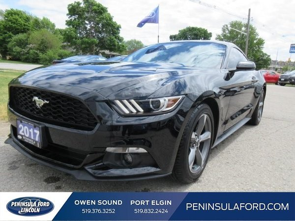 2017 Ford Mustang EcoBoost  ONLY 8,000KM! LIKE NEW, SAVE $$$!