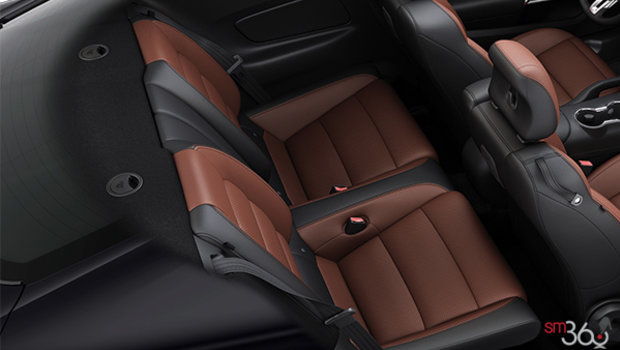 Dark Saddle Leather
