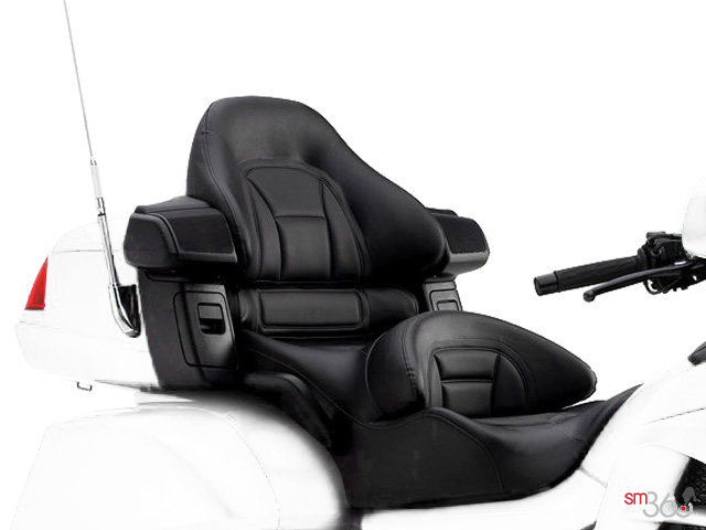 ... 2015HondaGold Wing Airbag ...