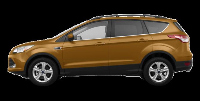 2016 Ford Escape SE | Photo 4 | Electric Spice