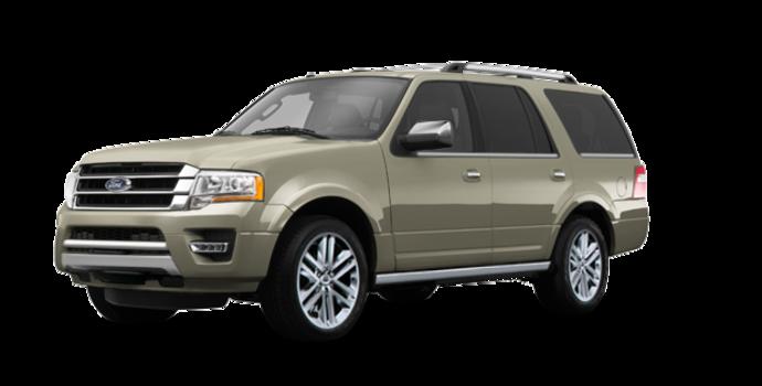 2017 Ford Expedition PLATINUM | Photo 6 | White Gold Metallic