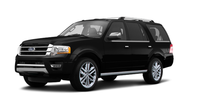 2017 Ford Expedition PLATINUM | Photo 6 | Shadow Black
